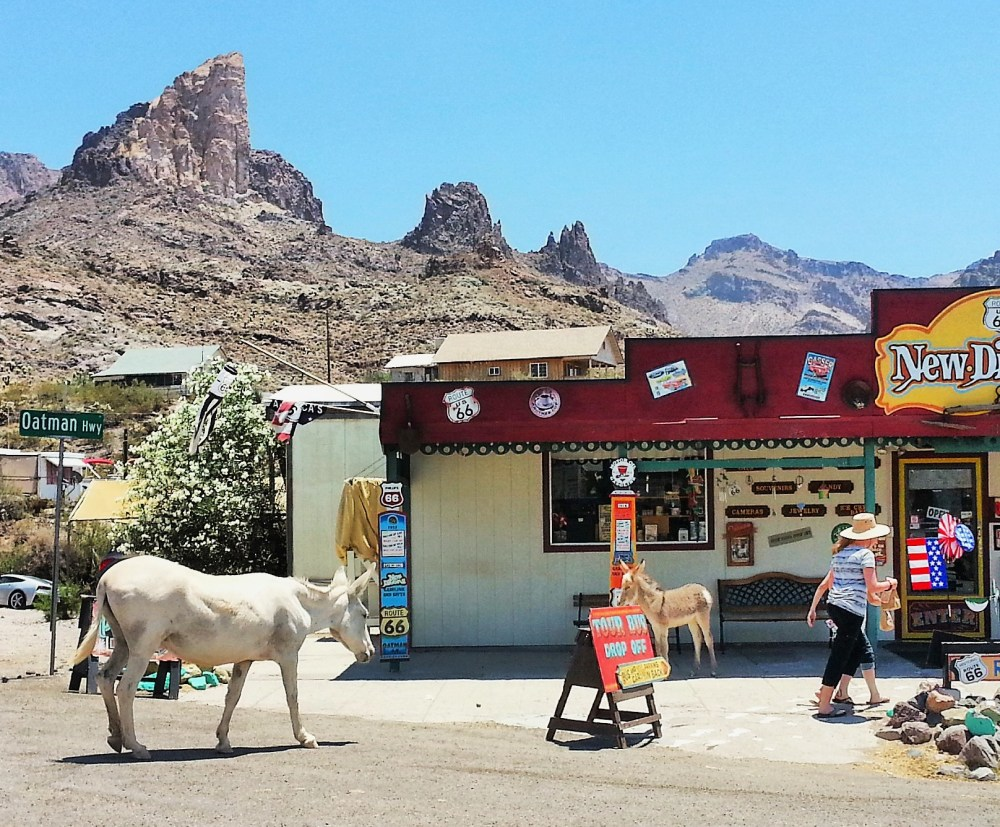 Old Western Charm and Burros Galore in Oatman, Arizona (6/6)