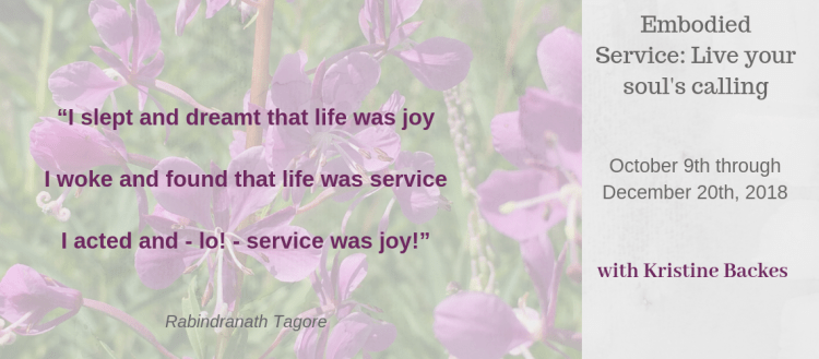 Embodied Service2