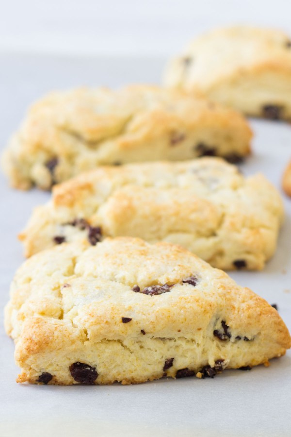 Close up of cream scones on a baking sheet.