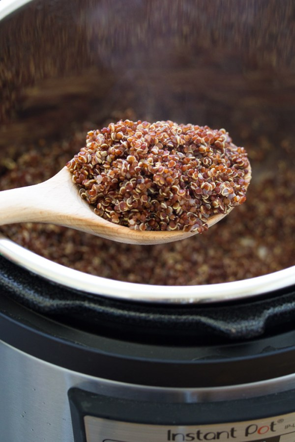 Cooked quinoa in the Instant Pot.