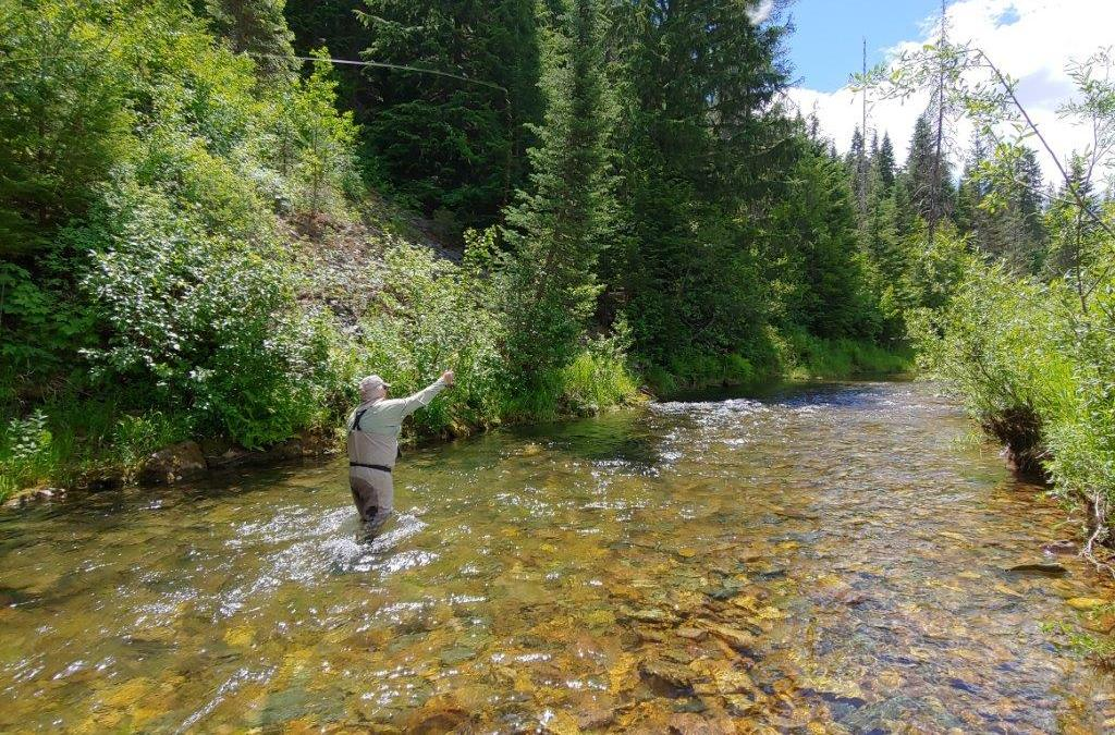 Fly-fishing the CDA River