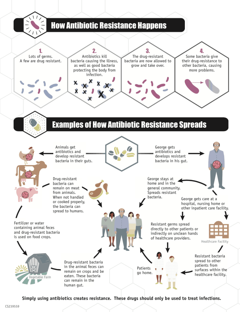 This infographic shows the many ways antibiotic resistance can occur and spread.