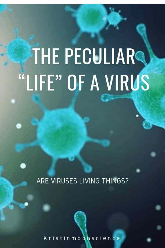 Scientifically-speaking, viruses are not living things. How then can they cause disease? Viruses exist that are able to infect humans, plants, animals, insects, fungi, amoeba, algae, and bacteria. How do viruses infect cells? How do you treat a viral infection? How well do you know your germs? Which of these diseases are caused by a virus?