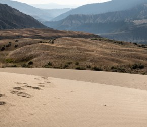 grasslands-farwell-canyon-dune-03-by-kristin-noack