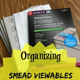 Organizing With Smead Viewables