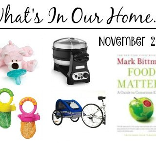 What's In Our Home – November 2015