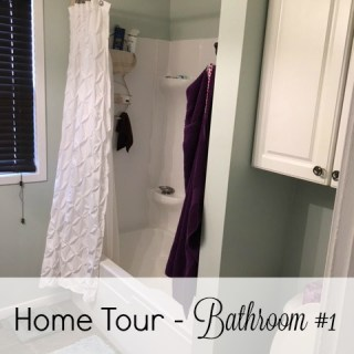 Home Tour – Bathroom #1
