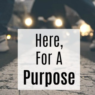 Here, For A Purpose