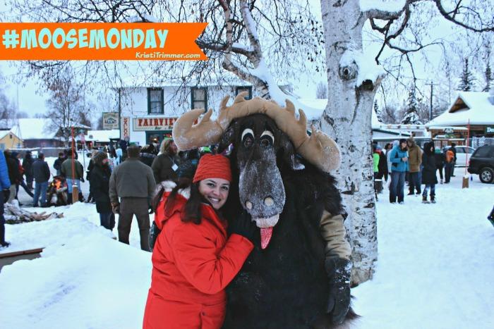 Talkeetna Moose Monday - feature