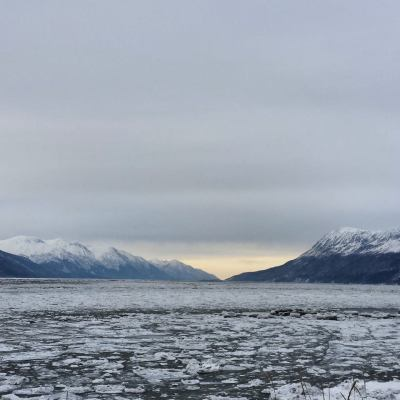 Talk Tuesday: How's Alaska Going?