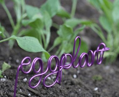 Eggplant Plant Marker