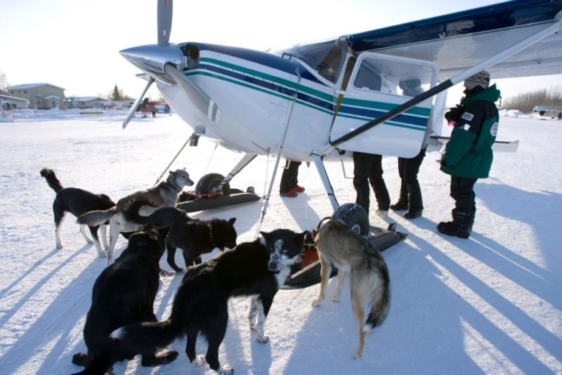 Alaska's Iditarod Air Force #iditarod #alaska #airforce