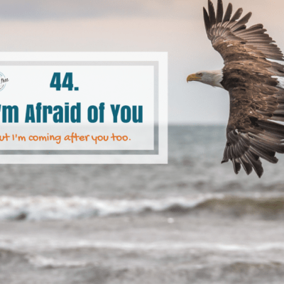 44 ~ I'm Afraid of You