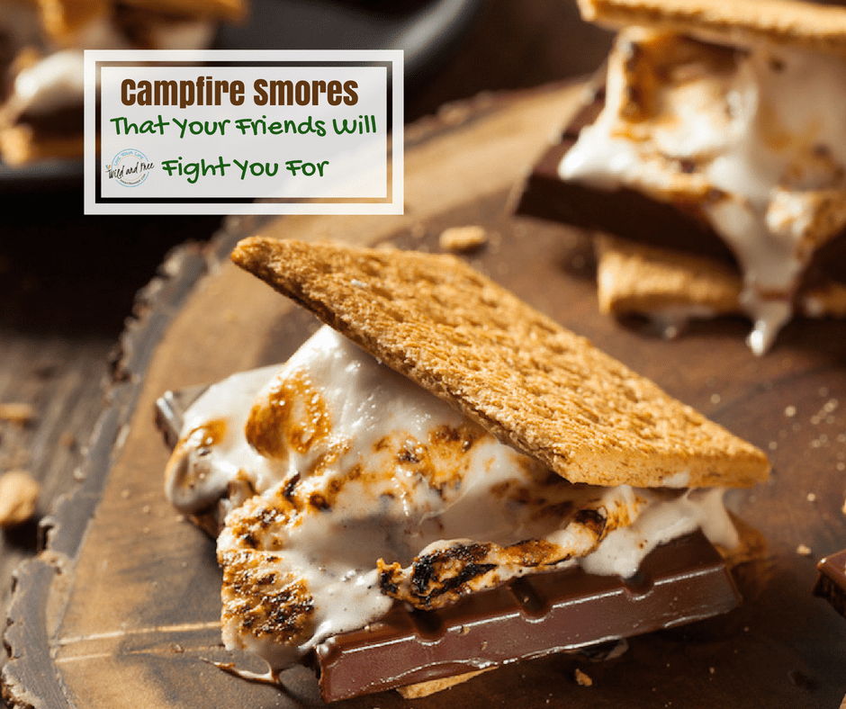Campfire Smores That Your Friends Will Fight You #smores #campfire #camping #campcooking #camp