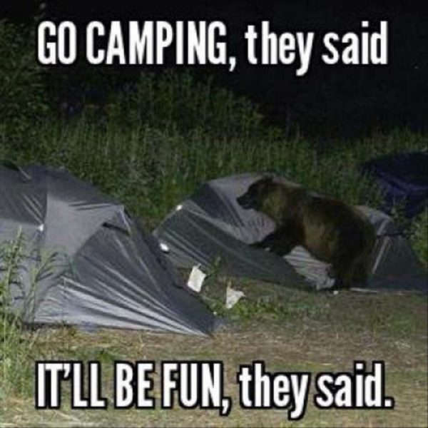 Go camping, they said. It'll be fun, they said. #campvibes #camping #camper #funny #funnymemes