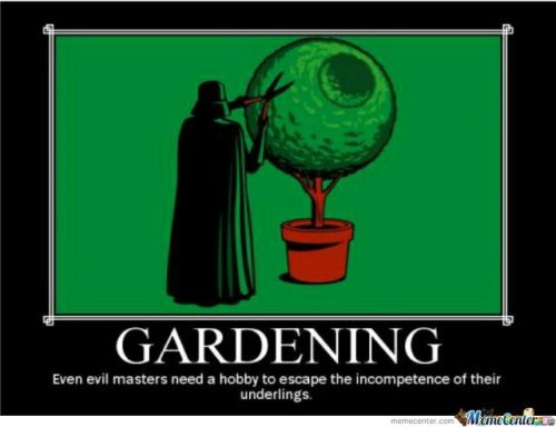 Darth Vadar Gardening