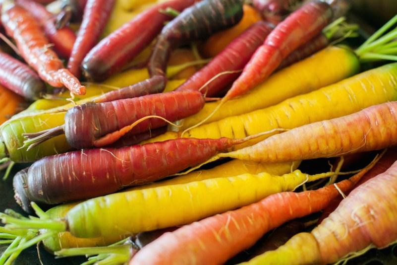 Growing Carrots from Seeds in Alaska #carrots #gardening #gardeningtips