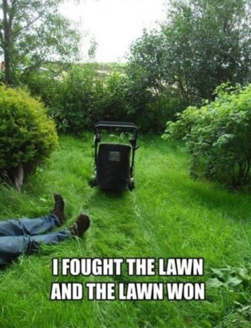 Lawn Mower Meme
