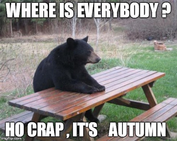 Where is everybody? Oh crap, it's autumn #fall #autumn #fallcolors #fallmemes #memes #bears