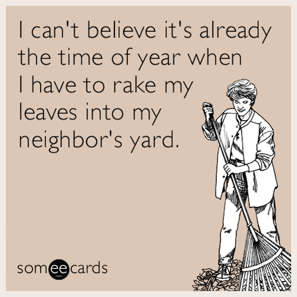 It's that time of year again! #yardwork #fall #autumn #fallmemes #memes