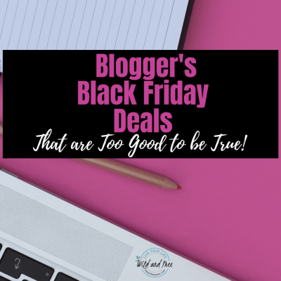 Bloggers Black Friday Deals That Are Too Good to be True