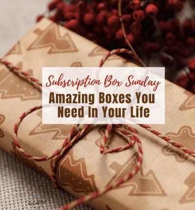 Subscription Box Sunday #subscriptionbox #subscriptionboxsunday