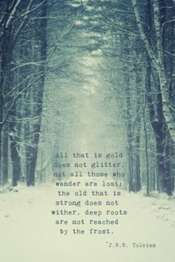 All that is gold does not glitter. Not all of those who wander are lost #camping #campingmemes #wintercamping