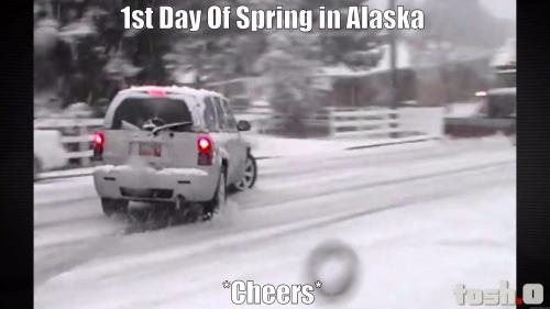 Spring in Alaska Memes #springinalaska #funny #alaskamemes