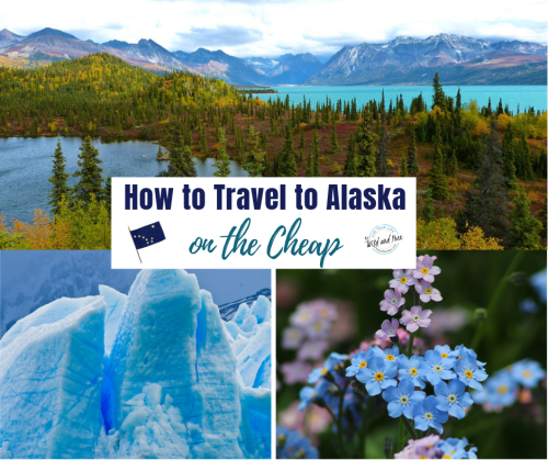 How to Save Money When Traveling to Alaska #traveltips #alaska #travelalaska #visitalaska