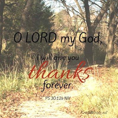 O LORD my God,