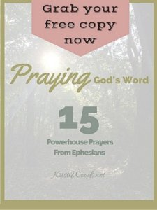 Praying God's Word Cover 300x400