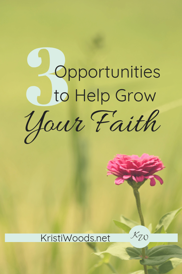 Light green background with a pink flower and the words 3 Opportunities to Help Grow Your Faith