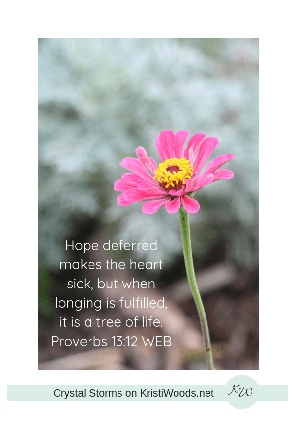 pink zinnia with Prov. 13:12 WEB in white lettering