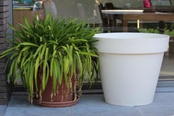 2014-05-14 : de pot van 192 liter, wat moet ik daar in zetten...
