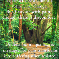 Resistance to Pain = Suffering