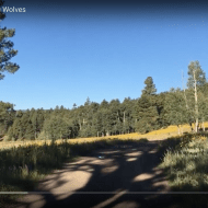Vallecitos Walking and Wolves (7:35)