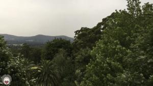 Pallotti Rain (1 minute)