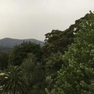 Pallotti Rain: an Attention Restoration Meditation (1 minute)