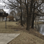 St Louis Lake Geese: an Attention Restoration Meditation (1 minute)