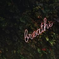 Recognizing the Importance of the Breath (6 minutes)