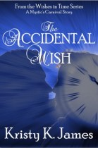 The Accidental Wish - small cover