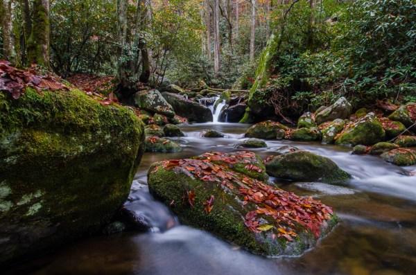 Smoky Mountains-573-2