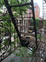 Our fire escape view