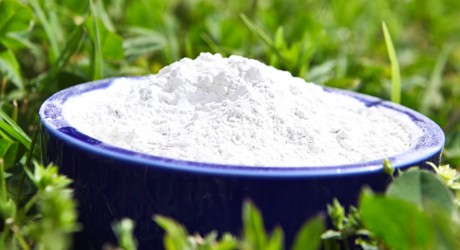 Arrowroot Powder... a must-have for gluten-free flour blends and baking.