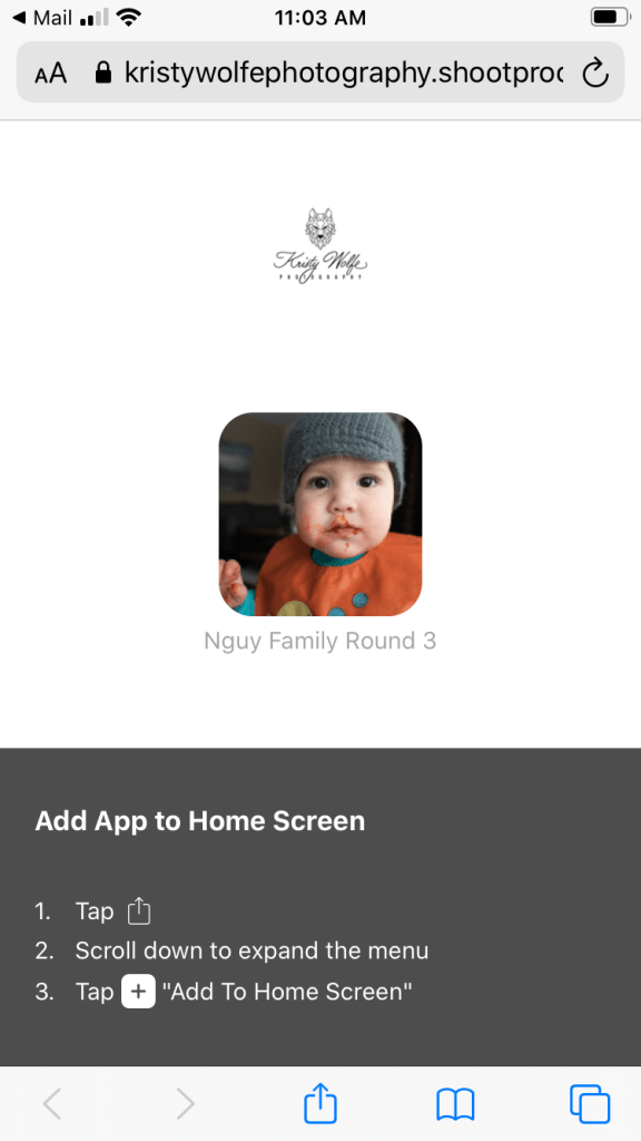 A screenshot of how to add a Kristy Wolfe Photography app to a home screen.