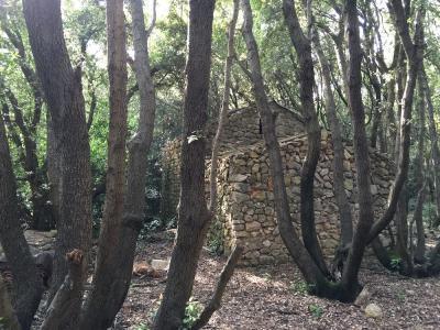 Rejtett ház az erdőben