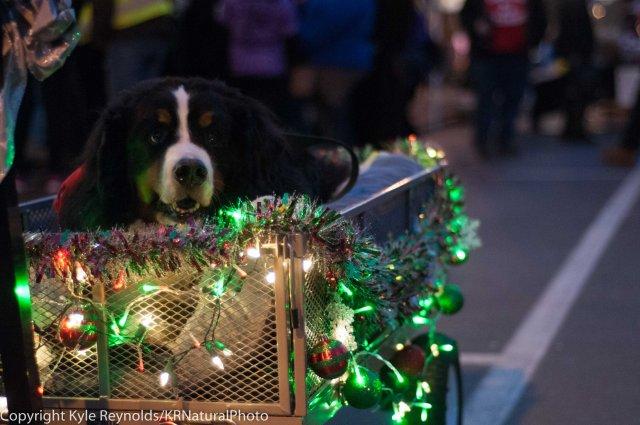 Sparkle Christmas_December 05, 2015_64