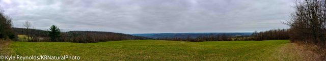 Panoramic Image from the Finger Lakes Trail