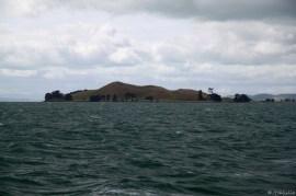 random Island