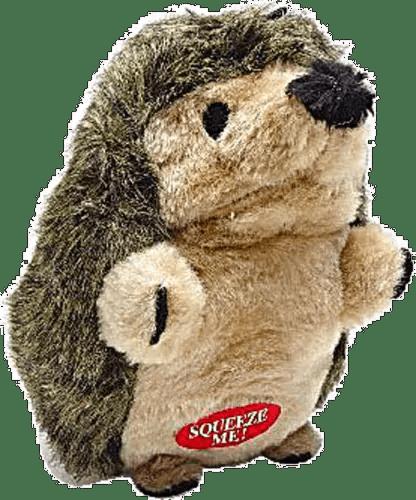 Hedgehog For Sale Ct : hedgehog, Meyer, Aspen, Large, Hedgehog